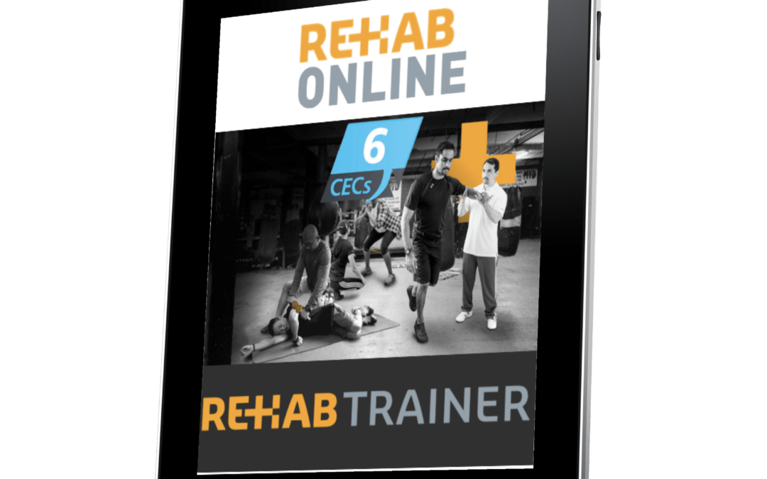 Rehab Trainer Online (6CECs)