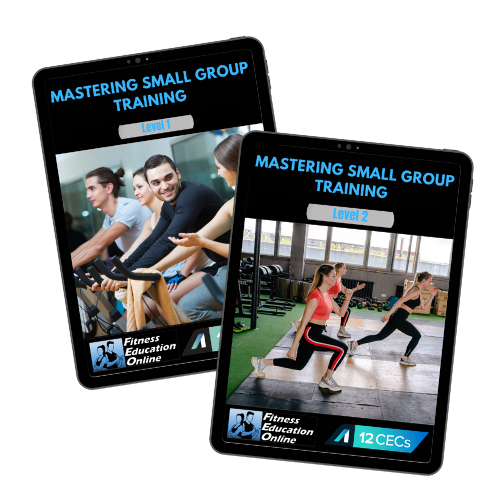 Mastering Small Group Training Package (23CECs)